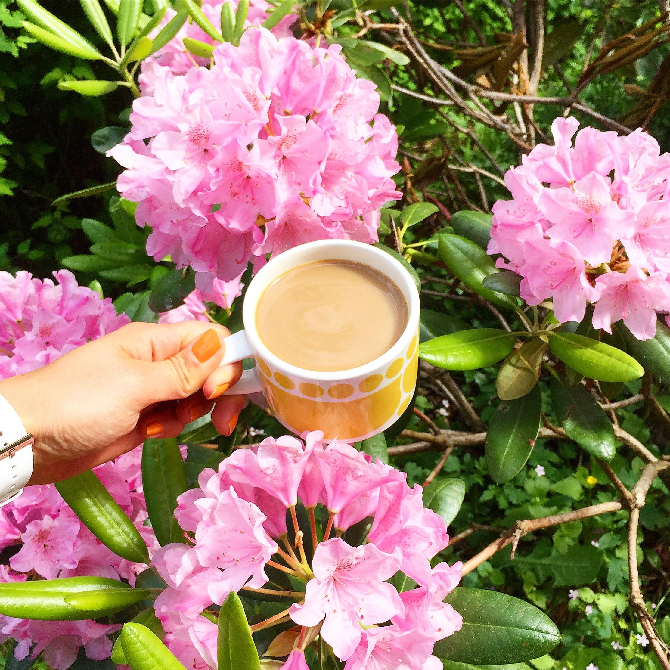 Elluyellow keltainen kahvikuppi ja rhodot