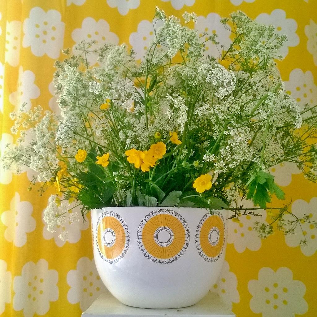 Elluyellow keltainen kesä kukat
