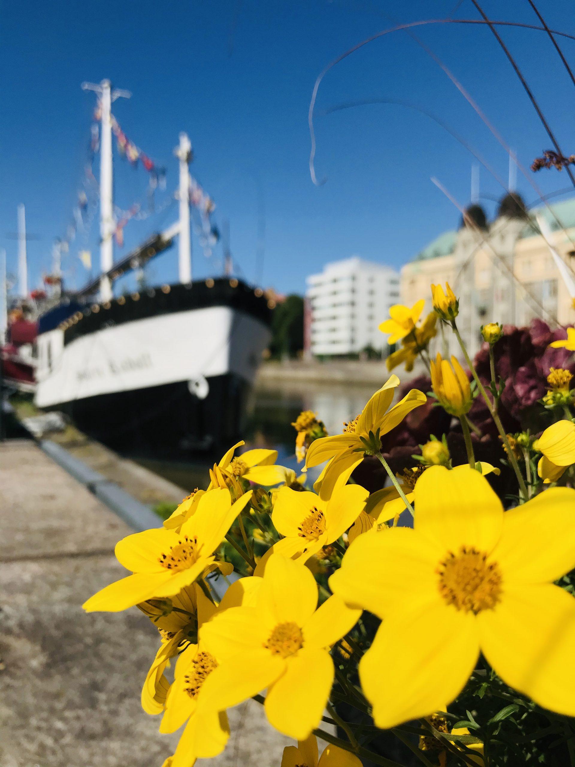 elluyellow Turun jokirannan laivoilla, keltaiset kukat
