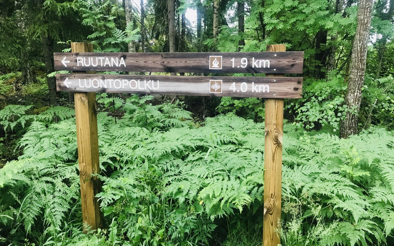 Elluyellow Nokian luontopolulla