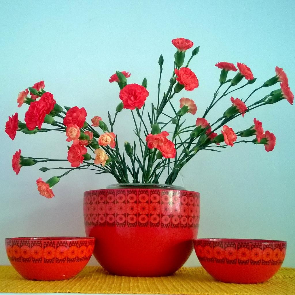 Elluyellow punaiset neilikat vintage emalikulhoissa
