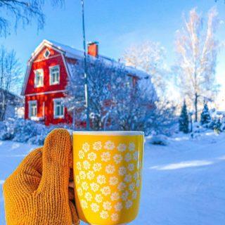 Ihanaa maaliskuuta✨💛✨ Viikonlopun upean aurinkoiset kelit ja mieletön +9 -asteen lämpö sai kyllä todella julistamaan kevään alkaneeksi🤩   ...pitää siis äkkiä fiilistellä vielä teille näitä helmikuun kauniimpia lumisia kahvihetkiäni... 😄  Tämä kirpparilta löytynyt Marimekon Puketti-sarjan muki on muuten ehdottomasti lemppareitani💛 Kahvin kofeiinin lisäksi tästä virtaa kyllä ihan täydellinen keltainen energia joka soluun💫  Millainen on sun lempi kahvi- tai teemukisi? Kupponen, jolla aamut vaan alkavat paremmin💛Mistä oot sen löytänyt tai saanut?✨ * * * #värikäskoti #marimekko #marimekkohome #marimekkolove #marimekkolife #kahvi #kahvikuppi #kahvihetki #kahvilla #aamukahvi #aamukahvilla #koti #munkoti #meilläkotona #scandihome #pocketofmyhome #howihome #keltainen #kirppislöytö #loppisfynd #inspiraatio #kaffekopp #punainentupa #kotoilu #kahvitauko #bloggaaja #instablogitfinland #instablogitsuomi #instablogitsuomi  #hyvinvointi
