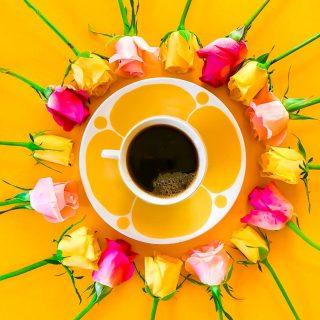 Huomenta!☀️Tänään tasan 13 vuoden ajan ollaan tahdottu...  💛keitellä aamukahvit aina kahdelle 💖tanssahdella vierekkäin elämän värikkään ruusuiset vaiheet ❤️rämpiä rinnakkain ne arjen piikkisemmätkin hetket  Näiden hääpäivän keltaisten  kaffekuppostemme ääreltä toivotan myös sun alkavaan viikkoon sopivan tasapainoisen sekoituksen riemun kiljahduksia ja arjen ärsytyksiä - leveitä hymyjä ja lämpimiä halauksia!💛 * * * #kahvi #kahvihetki #kahvilla #kahvikuppi #ruusu #keltainen #värikäs #värikäskoti #keittiö #keittiönsisustus #keittiöinspiraatio #retrokitchen #retrokök #retrokoti #rakkaus #meilläkotona #vuosipäivä #kiitollinen #parisuhde #astiat #loppisfynd #sisustus #inspiraatio #aamu #aamukahvi #kesä #scandihome #pocketofmyhome #instablogitfinland #kirppislöytö